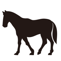 馬革の特徴